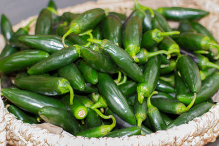 Green ripe jalapenos in a wicker basket, hot pepper vegetable