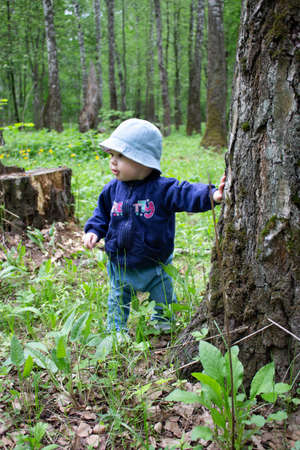Baby 8-9 months takes the first steps in nature. A girl in the woods looks around holding onto a tree trunk. A girl in jeans and a cap walks through the woods. Little baby in the forest