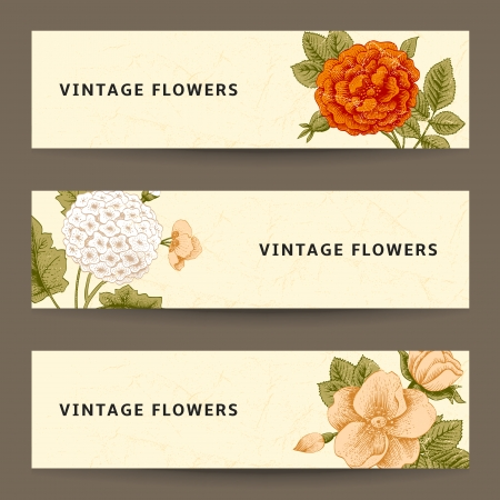 dogrose: Set of horizontal banners with vintage flowers. Garden rose, dog-rose and hydrangea on a beige background. Illustration
