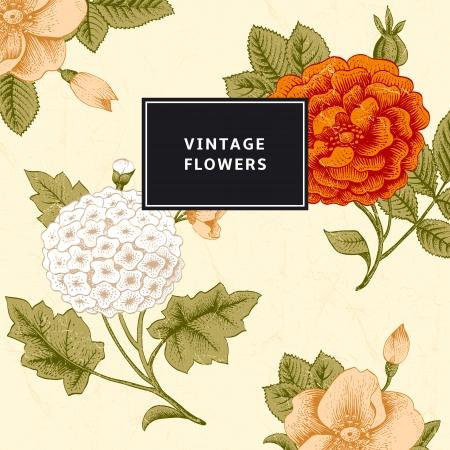dull: Tarjeta de la vendimia con flores Vectores