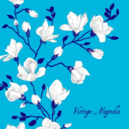 magnolia: Vintage blue card with a magnolia