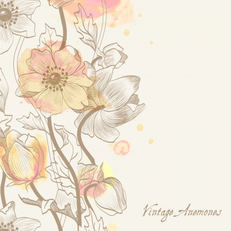 water color: anemone; background; vintage; eps 10, water color,  picturesque Illustration