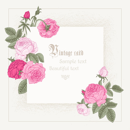 Frame imitating paper surrounded by pink roses blooming on a gray background.