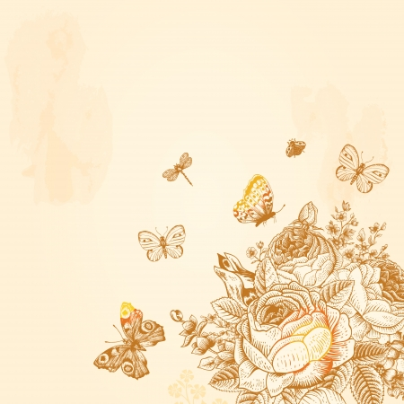 Beige Vintage vector background with a bouquet of flowers and butterflies  Illustration Фото со стока - 25022602