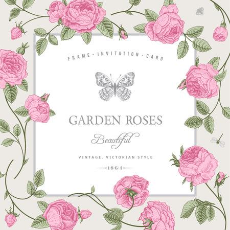 cartoline vittoriane: Scheda dell'annata con belle rose del giardino rosa su uno sfondo grigio
