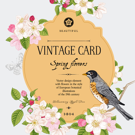 Spring elegant vector vintage card with blossoming apple tree branch and bird. European styled botanical illustration 19th century. Фото со стока - 26169122