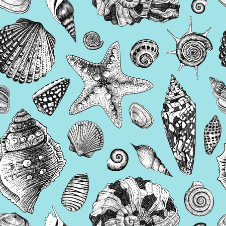 seashell: Vector seamless vintage pattern with black and white seashells on mint background.