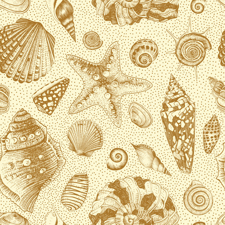 sea star: Vector seamless vintage pattern with brown seashells on a sandy beige background.