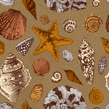 Vector seamless vintage pattern with colorful seashells on a sandy brown background  Vector