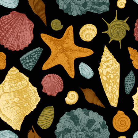 Vector seamless vintage pattern with colorful seashells on black background  Vector