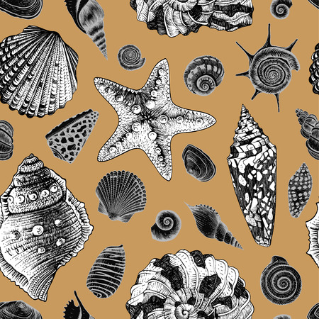 sea star: Vector seamless vintage pattern with white and black seashells on gold background