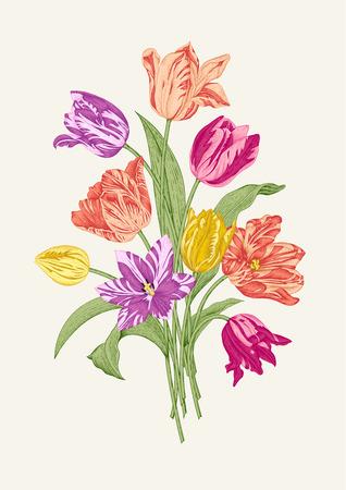 灰色の背景上の 9 つのカラフルなチューリップの花束。19 世紀のヨーロッパの植物のイラストのスタイルでデザインのベクトル ヴィンテージの要素