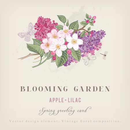Spring Vintage greeting vector card with blooming branches of apple and purple lilac on a gray background. Illustration