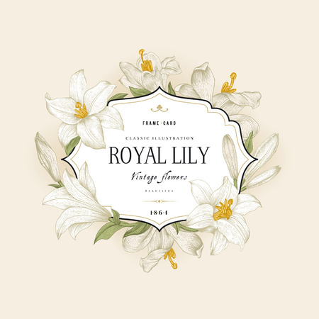 royal frame: Vintage floral frame with white royal lilies on a cream background. Vector illustration.