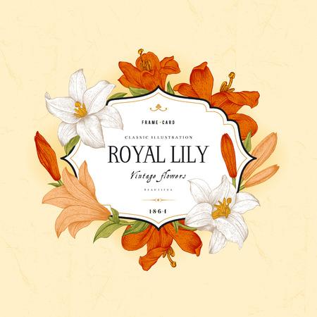 vintage postcard: Vintage floral frame with white, red, coral royal lilies on a beige background. Vector illustration. Illustration