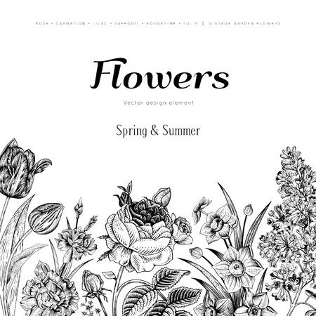 여름 꽃 빈티지 벡터 배경입니다. 흰색 배경에 정원 검은 꽃이 만발한 꽃. 장미, 라일락, 카네이션, 수선화, 튤립. 흑백. 일러스트