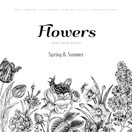zomertuin: Zomer bloemen vintage vector achtergrond. Bloeiende tuin zwarte bloemen op een witte achtergrond. Rose, lila, anjer, narcis, tulp. Monochroom.