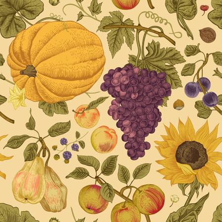 Autumn harvest. Pumpkin, sunflower, nuts and fruit on a beige background. Vector seamless vintage pattern.
