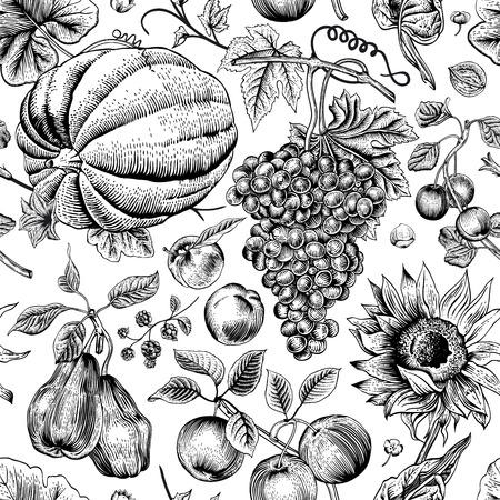 秋の収穫。ブラック カボチャ、ヒマワリ、ナッツ、白い背景の上のフルーツ。ビンテージ パターンのシームレスなベクトル。モノクロ。  イラスト・ベクター素材