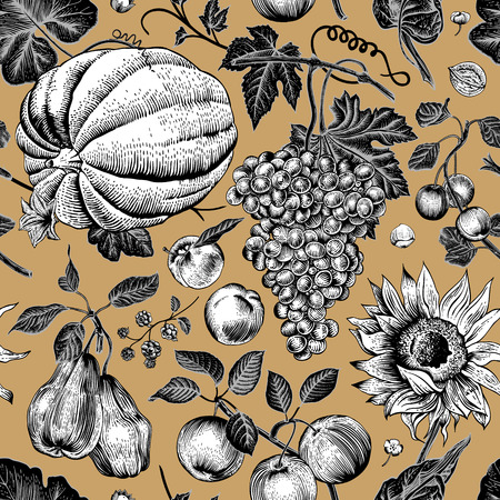 Autumn harvest. Black and white pumpkin, sunflower, nuts and fruit on a gold background. Vector seamless vintage pattern. Иллюстрация