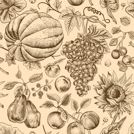 Autumn harvest. Brown pumpkin, sunflower, nuts and fruit on a beige background. Vector seamless vintage pattern. Vector