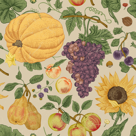 Autumn harvest. Pumpkin, sunflower, nuts and fruit on a gray background. Vector seamless vintage pattern.