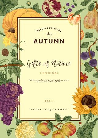 Jesienią zbiorów. Wektor zabytkowe karty. Ramki z kwiatów, owoców, orzechów i dyni.