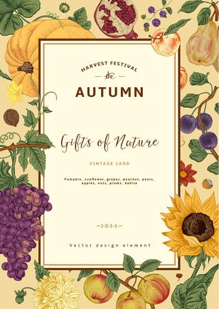 La cosecha de otoño. Vector tarjeta de cosecha. Marco con flores, frutas, nueces y calabaza. Ilustración de vector
