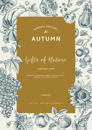 Autumn harvest. Vector vintage card. Frame with flowers, fruits, nuts and pumpkin. Фото со стока - 32428999
