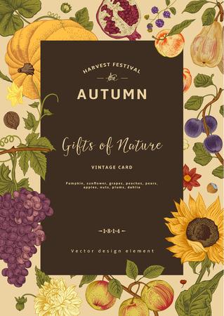 Herbsternte. Vector Jahrgang Karte. Rahmen mit Blumen, Früchten, Nüssen und Kürbis.