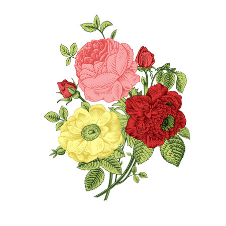 Floral card. Bouquet of roses, dogrose and anemone. Vintage vector illustration. Classic. Bright color. Vector