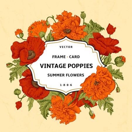 cartoline vittoriane: Vintage cornice floreale con arancia, papaveri rossi su fondo beige. Illustrazione vettoriale.