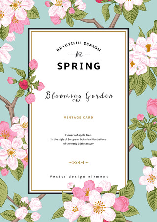 Vintage vector vertical card spring. Branch of apple tree blossoms pink flowers on mint background. Çizim