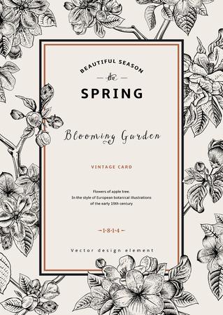 ビンテージ垂直スプリング カード。リンゴの木の花の枝。黒と白のベクトル図です。