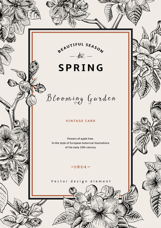 Vintage vertical spring card. Branch of apple tree blossoms. Black and white vector illustration.