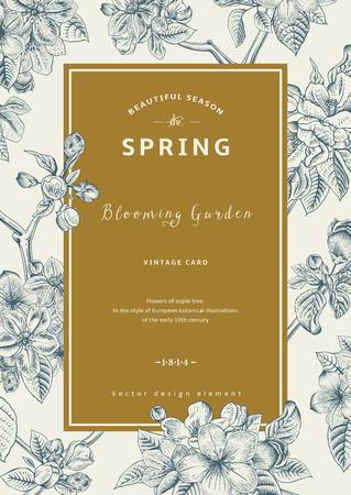 Vintage vertical spring card. Branch of apple tree blossoms. Illustration