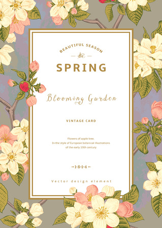Vintage vector vertical spring card. Blossoming branch of apple against the morning sky.