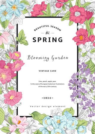 flor de durazno: Vector Vintage primavera tarjeta vertical. Ramas en flor de colores de lila, melocotón, pera, granada, manzana sobre fondo gris.