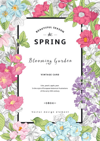 vertical garden: Vintage vector vertical card spring. Colorful blooming branches of lilac, peach, pear, pomegranate, apple on gray background.
