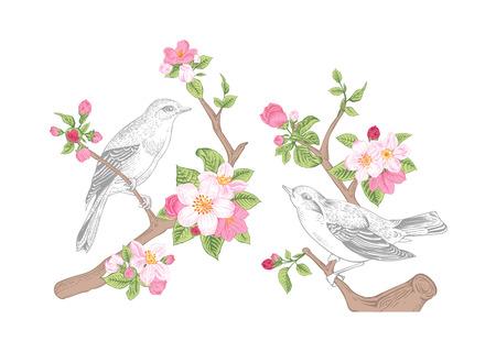 ビンテージ ベクトル春カード。  イラスト・ベクター素材