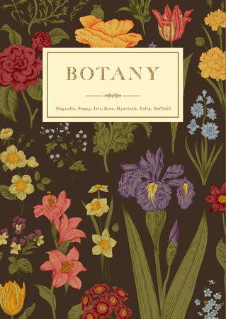 Botany. Vintage floral card. Vector illustration of style engravings. Colorful flowers on brown background.