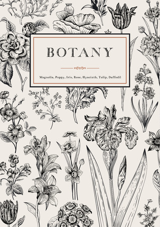 Fleures: Botanique. Vintage floral card. Vector illustration de gravures de style. Fleurs noir et blanc.
