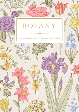 Botany. Vintage floral card. Vector illustration of style engravings. Pastel flowers.