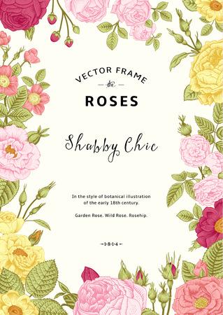 cartoline vittoriane: Vettore cornice d'epoca. Giardino e rose selvatiche. Nello stile di un vecchio illustrazione botanica. Colorato.