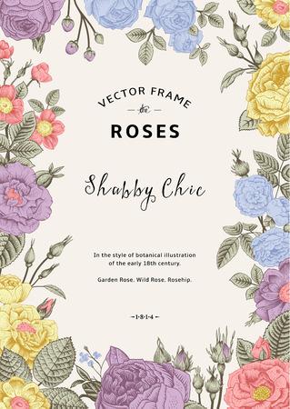 cartoline vittoriane: Vettore cornice d'epoca. Giardino e rose selvatiche. Nello stile di un vecchio illustrazione botanica. Colore pastello.