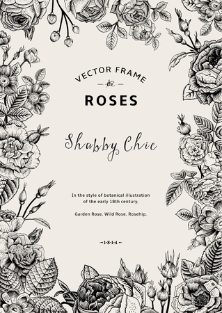 botanical: Vintage vector frame. Garden and wild roses. In the style of an old botanical illustration. Black and White.