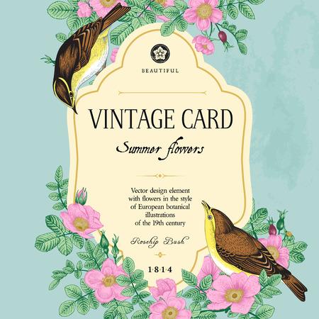 ベクトル ヴィンテージ花カード。野生のバラの茂みで 2 羽の鳥。  イラスト・ベクター素材