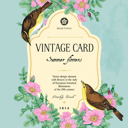 Vector vintage floral card. Two birds in the wild rose bushes. Фото со стока - 45602546