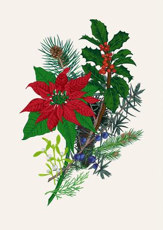 ramo de flores: Ramo de Invierno. Ilustración vectorial de la vendimia. Los elementos de diseño. Feliz Año Nuevo y feliz Navidad.