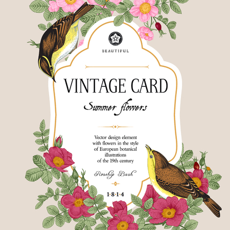 bush: Vector vintage floral card. Two birds in the wild rose bushes.